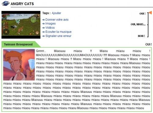 angrycats.jpg